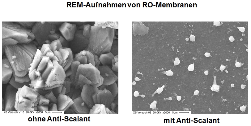 Membrane-Scaling-2